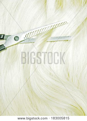 scissors in blond hair isolated making coiffure