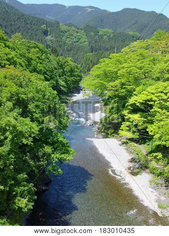 amazing natural view of mountain river surrounded by green forest at TAMAKAWA TOKYO JAPAN