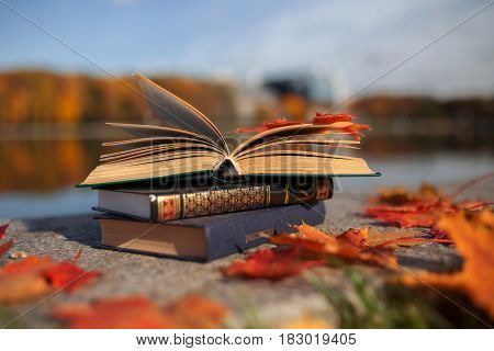 Open book outdoor. Knowledge is power. Autumn