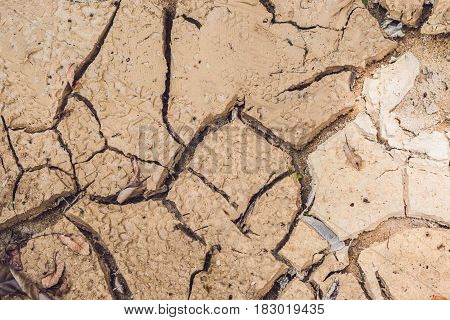 Dry Cracked Earth. The Desert. Background. It's Hot, The Global Shortage Of Water On The Planet