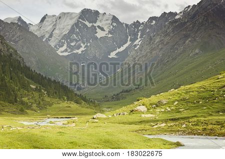 river valley with snow-covered mountains and green fields and forest on slopes in Tian-shan mountains