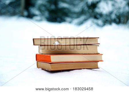 A stack of books on the snow. Winter