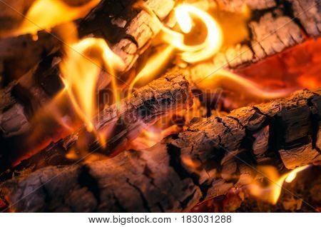 Burning fire background. Fire and embers close up background.
