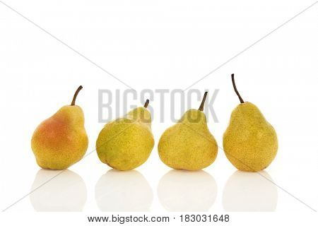 Four fresh pears in a row isolated over white background