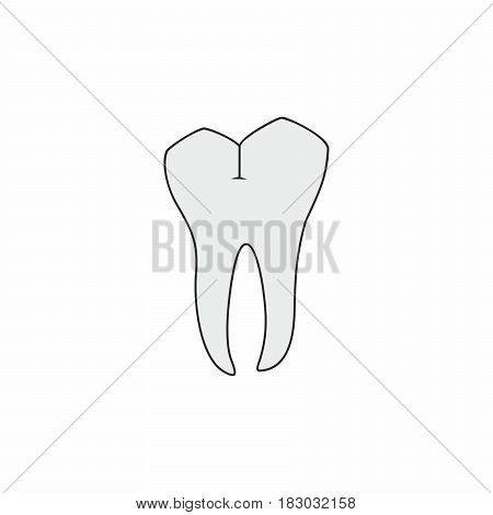 Molar tooth vector design isolated on white background