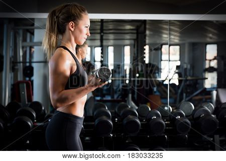 Attractive woman weightlifting at the gym. Body training, dumbbell workout. Healthy lifestyle.