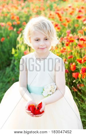 girl model, poppies, childhood, fashion, children, nature and summer concept - young smiling blonde girl with buds of poppy, she in a white ball dress on a field of blooming poppies