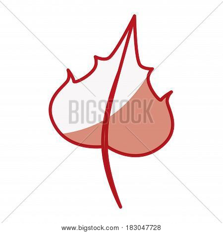 Grape leaf isolated icon vector illustration graphic design