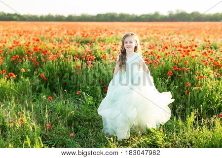 girl model, poppies, childhood, fashion, children, nature and summer concept - on the sunny field of poppies is a beautiful smiling little girl - princess, she is dressed in a festive blue dress