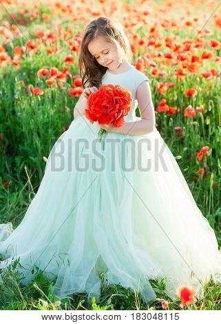 girl model, poppies, childhood, fashion, children, nature and summer concept - cute little girl model in pale blue ball gown in a field of poppies with a smile, considering the bouquet of flowers
