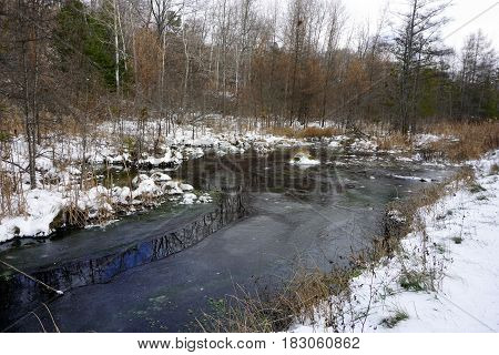 Fresh snow and ice on the West Fourth Street Swamp in Harbor Springs, Michigan during November.