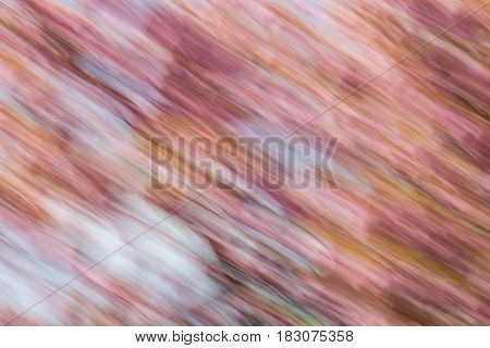 Abstract background image of cherry blossom flowers with a diagonal motion blur effect