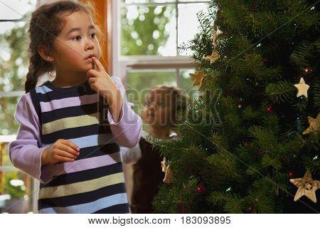 Mixed race girl decorating Christmas tree