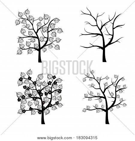 Black and white trees seasons vector set.