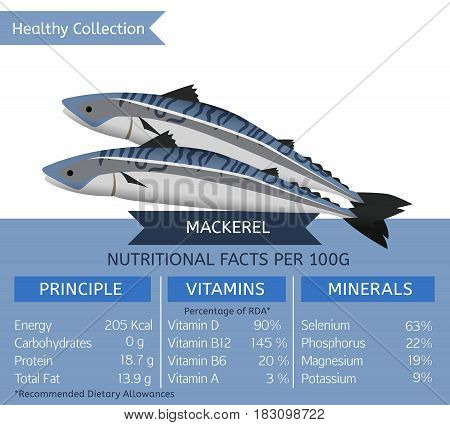 Mackerel health benefits. Vector illustration with useful nutritional facts. Essential vitamins and minerals in healthy food. Medical, healthcare and dietary concept.
