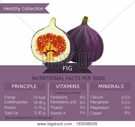 Fig health benefits. Vector illustration with useful nutritional facts. Essential vitamins and minerals in healthy food. Medical, healthcare and dietory concept.