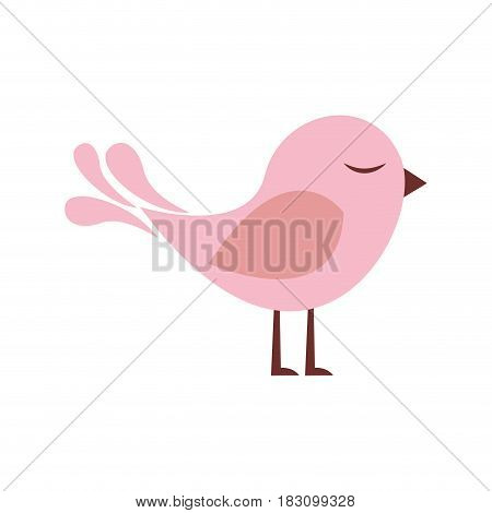 colorful silhouette with cute bird vector illustration