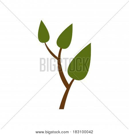colorful silhouette of small tree with leaves and ramifications vector illustration