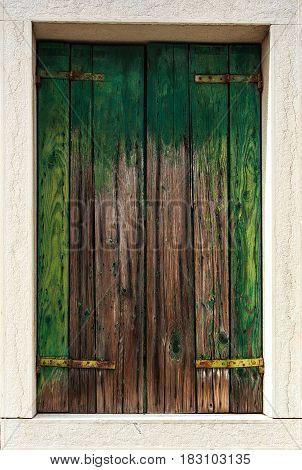 Old Wooden Door moos retro styled wall