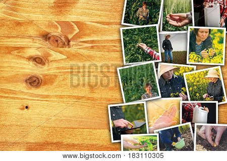 Woman in farming and agriculture photo collage with copy space of many photographs depicting female farmer working in field and garden