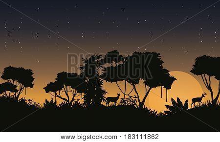 Landscape jungle rain forest silhouettes vector illustration