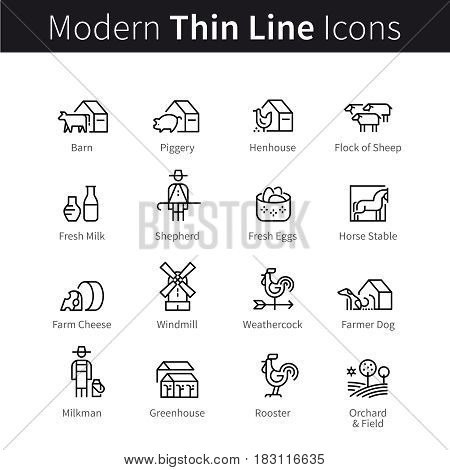 Set of domestic and farm animals. Farming and agriculture signs. thin black line art icons. Linear style illustrations isolated on white.