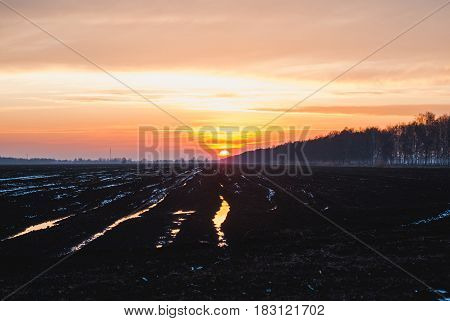 Sunset on peat field, early spring, the concept of agricultural industry