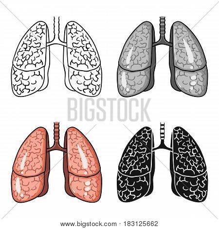 Human lungs icon in cartoon style isolated on white background. Human organs symbol vector illustration.