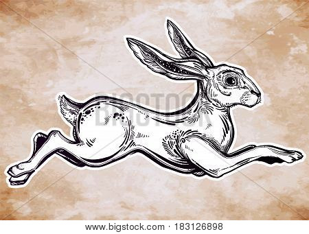 Fast moving animal in vinatge style. Hare running or jackrabbit jumping, For tattoo. Nature, outdoors design, free spirit and speed symbol. Isolated vector illustration. Great outdoors.