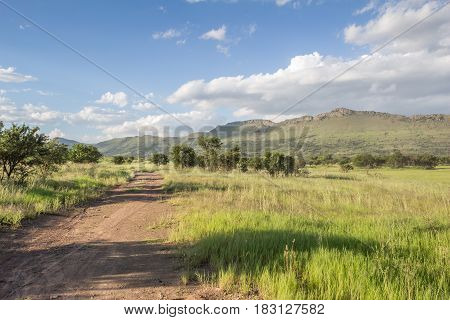 Long shadows of late afternoon sun over green grass field next to cloudy mountain range in African nature reserve - photo