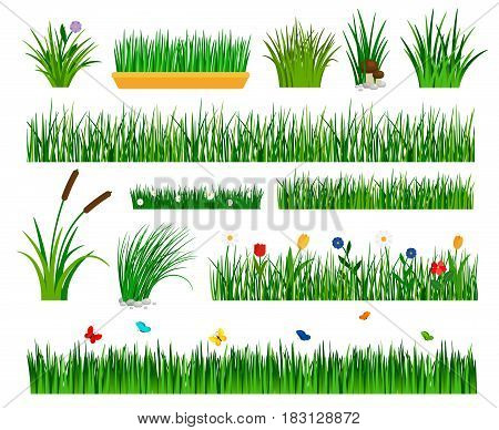Growing Grass Template For Garden Vector. Gardener Section And Boxes With  Flowers, Bulrush And