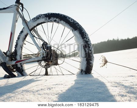 Mountain Bike Stay In Powder Snow.  Snow Flakes Melting On Dark Off Road Tyre.