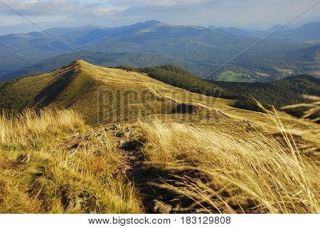 Landscape of autumn mountains polonina carynska bieszczady Poland