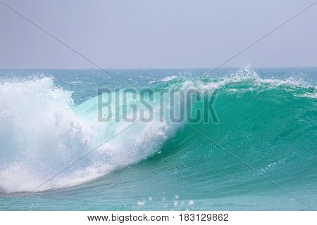 Powerful wave on the coast of the ocean