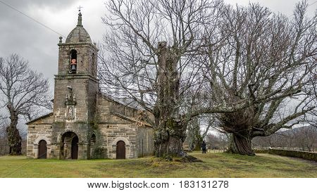 Winter time over ancient chestnut trees in a row and old chapel facade