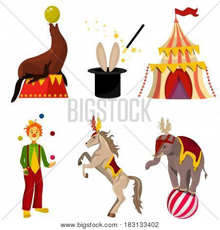 Very high quality original trendy vector circus set with elephant on ball, water seal . magic hat, clown and a horse