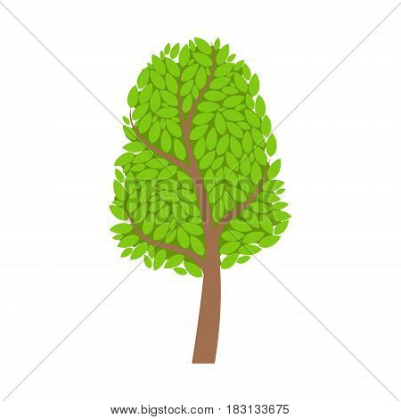 Season tree with green leaves, element of a landscape. Colorful cartoon vector Illustration isolated on a white background