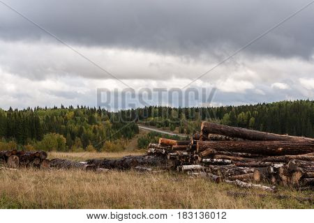 Cloudy Autumn Landscape. Warehouse Of Felled Trees, Forest And Gloomy Sky.