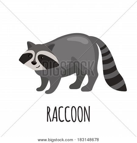 Cute Raccoon in flat style isolated on white background. Vector illustration. Forest animal. Cartoon Raccoon.