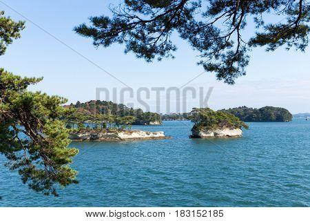 Matsushima in sunny day