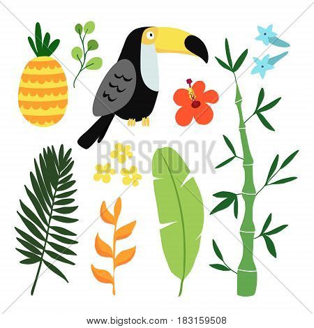 Summer tropical graphic elements. Toucan bird. Jungle floral illustrations, palm leaves, pineapple and hibiscus flowers. Isolated illustrations, flat design, stock vector.
