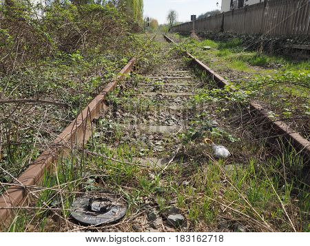 vintage disused railway railroad tracks covered by vegetation