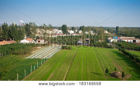 Tianjin, China - Nov 1, 2016: Image captured on High Speed Rail (HSR) from Tianjin to Shanghai, passing countryside with a quiet farming township. Average speed: 300 km/h.