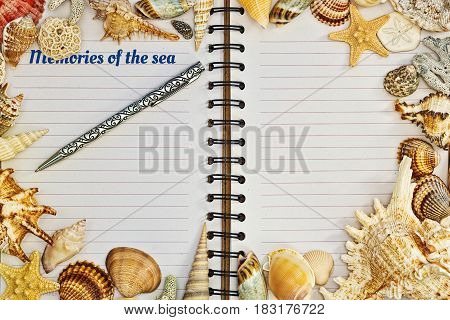 Opened blank notebook with tagline and a pen framed with colored shells and conches