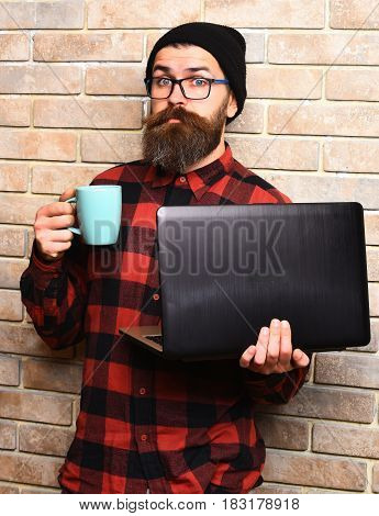 Bearded man long beard. Brutal caucasian surprised unshaven hipster holding laptop with mag or cup in red black checkered shirt with hat and glasses on beige brick wall studio background