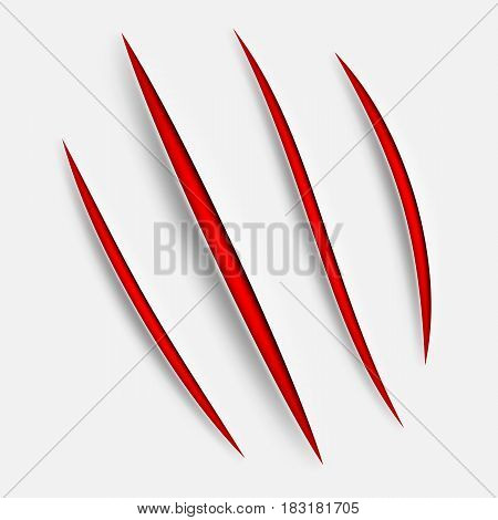 Set of animal claw scratches or scars isolated on white background