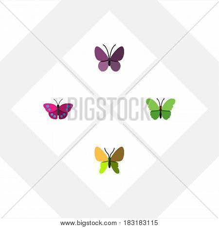 Flat Monarch Set Of Violet Wing, Archippus, Milkweed And Other Vector Objects. Also Includes Monarch, Insect, Butterfly Elements.