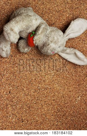 Old rabbit doll drops on brown ground