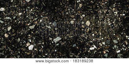 Soil, soil background, soil texture, spring soil. Earth, earth background, ground texture. Nature background. Gray background. Grunge background.