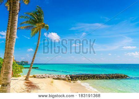 Beautiful tropical Maldives island, white sandy beach and sea  with palms tree around